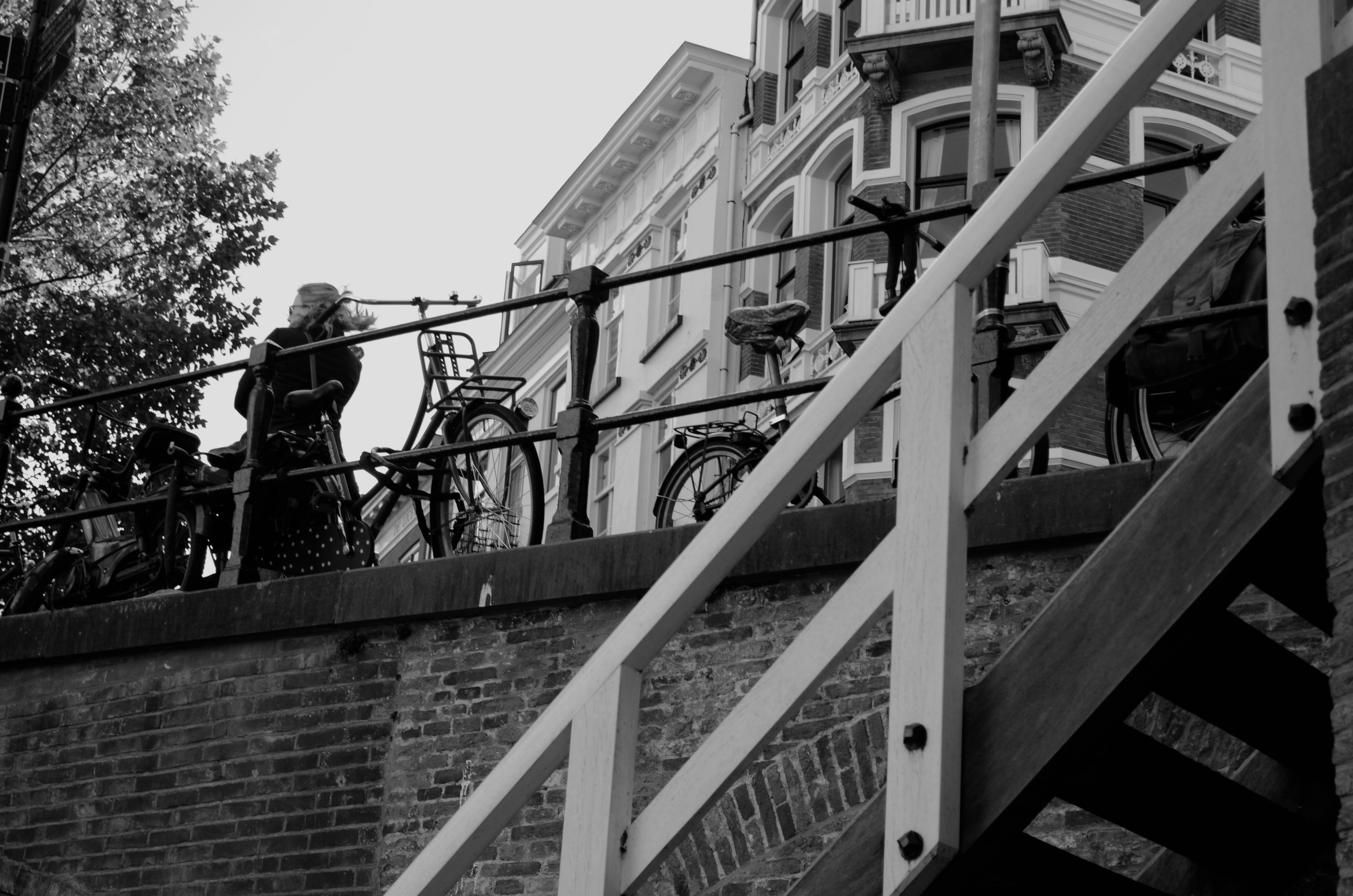 What to do in Utrecht