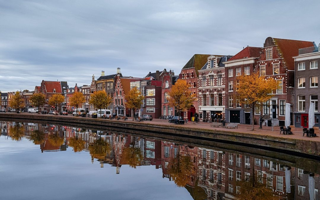 What to do in Haarlem