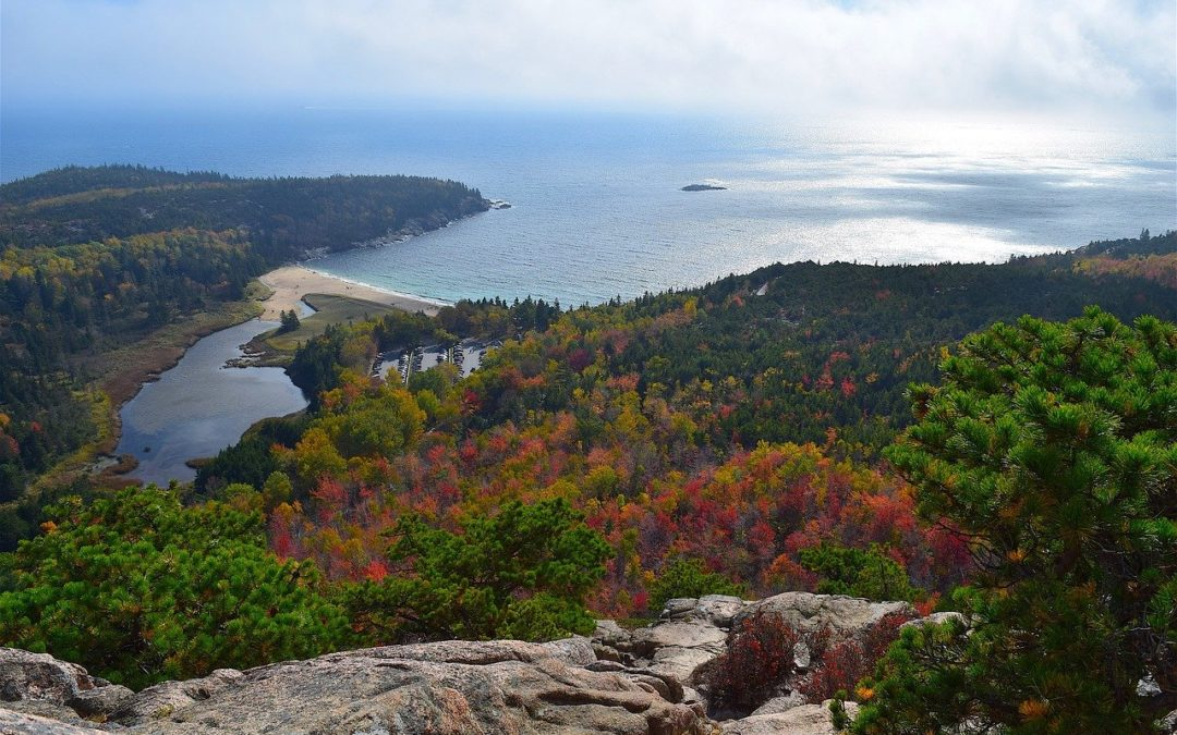 15 Best Things to do in Acadia National Park