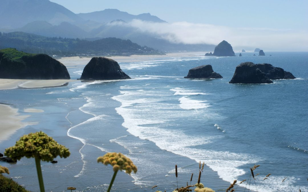 My Guide to the Best Surf Spots in Oregon