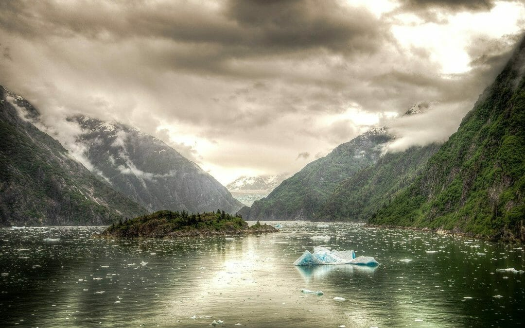 Best Time to Go Whale Watching in Alaska